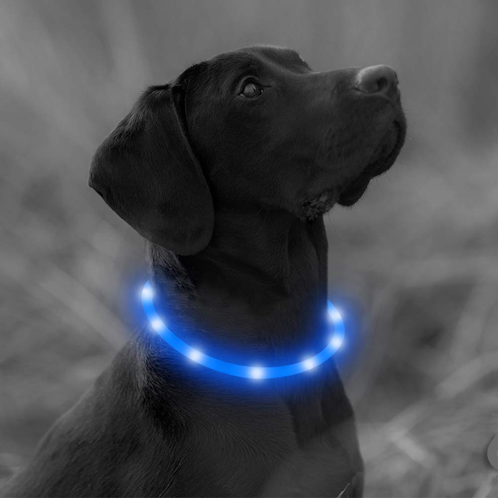 Clan_X LED Dog Collar, USB Rechargeable Silicone Glowing Pet Collar for Dogs, Light Up Doggy Collars Keep Your Dogs Be Seen& Be Safe (Blue-Silicone)