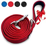 PetsLovers Heavy Duty Dog Leash - Padded Handle, Dual-sided Reflective Lines, D-ring Poop Bag Holder - 6ft Long, 1in Wide