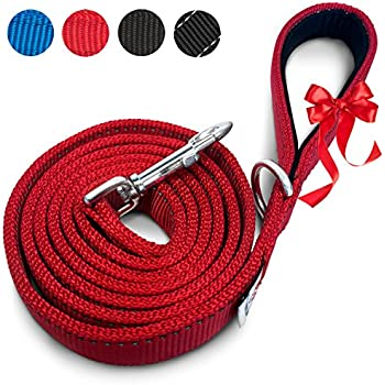 Heavy Duty Dog Leashes | Comfortable Padded Grip to Hold Strong Dogs | Reflective Lines for Safe Night Walks | Perfect Length to Control Dogs | Recommended For Medium & Large Dogs | 6ft x 1in