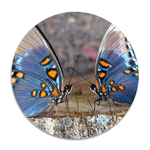 Reteone Animals Wings Butterfly Insect Anti-slip Coral Velvet Round Area Rugs Memory Foam Floor Carpets Mats 15.75 Inch Diameter Bedroom Rug Yoga Chair Mat Doormat (Rugs Edmonton Ikea)