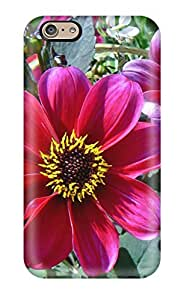 Excellent Iphone 6 Case Tpu Cover Back Skin Protector Summer Flowers