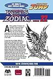 Knights of the Zodiac (Saint Seiya), Vol. 22
