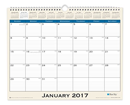 Blue Sky 2017 Monthly Wall Calendar, Wire-O Binding, 15