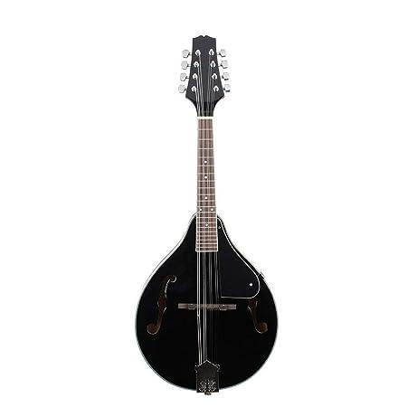 Allibuy Principiantes Chapa Amantes de la música Guitarra Color ...