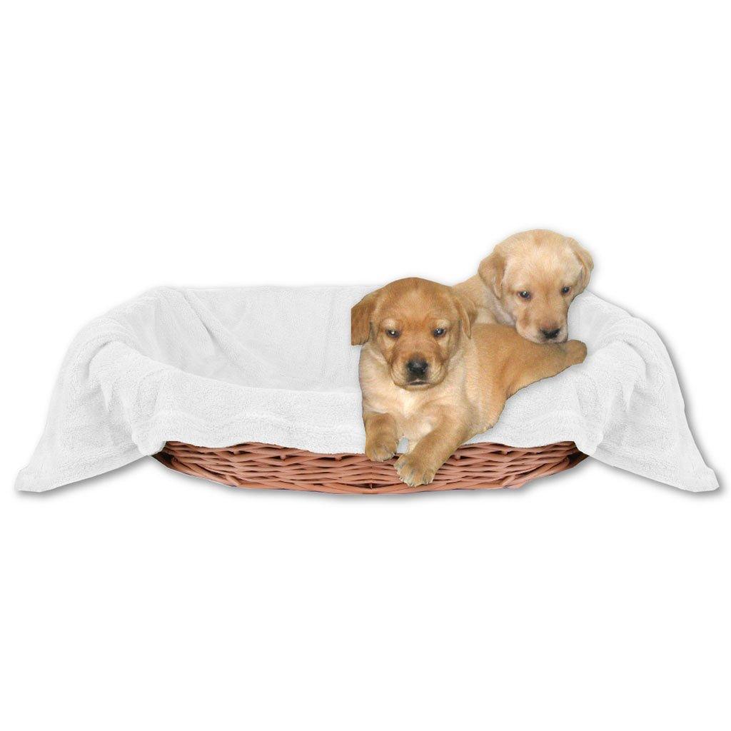 Bestlivings Animales Manta Manta perro mascota, suave disponible en muchos colores diferentes: Amazon.es: Hogar
