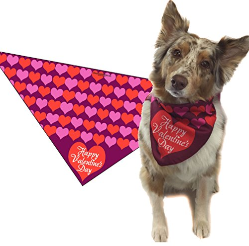 Valentine's Day Dog Bandana