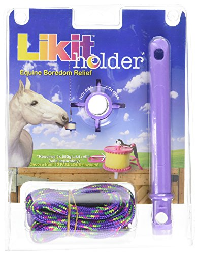 Likit Holder Stable Toy With Treat, Purple