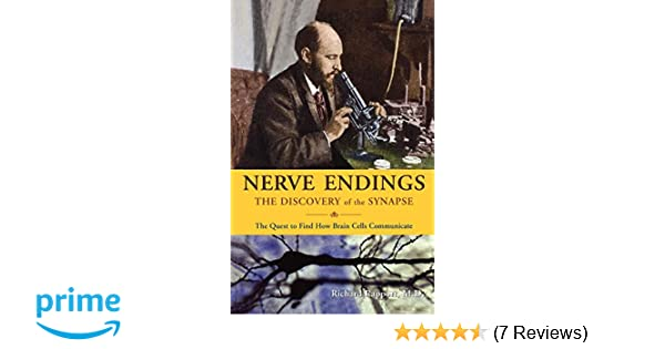 Nerve Endings: The Discovery of the Synapse: Richard Rapport