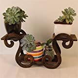 AIDELAI flower rack Flower Shelf Decoration Solid Wood Desktop Flower Racks Fresh Natural Pastoral Anti-corrosion Patio Garden Pergolas