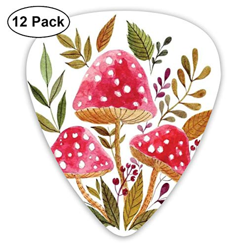 (Guitar Picks - Abstract Art Colorful Designs,Aquarelle Amantias With Autumn Season Foliage And Berries Mushroom Illustration,Unique Guitar Gift,For Bass Electric & Acoustic Guitars-12 Pack)