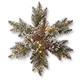 National Tree 18 Inch Glittery Bristle Pine Snowflake with 6 Cones and 15 Warm White Battery Operated LED Lights with Timer (GB1-300L-18SB1)
