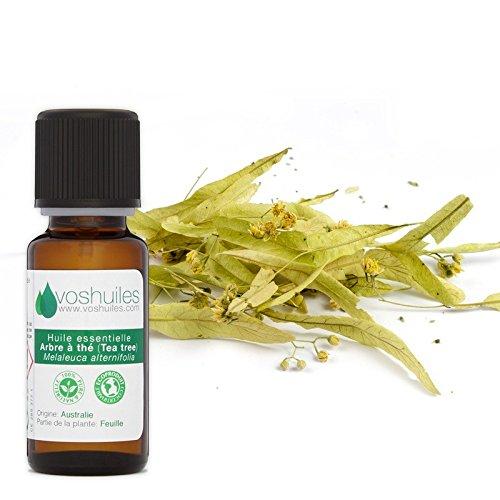 Huile Essentielle d'Arbre à thé (Tea tree) - 10ml product image