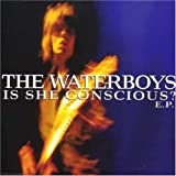 Is She Conscious by Waterboys (2001-11-29)
