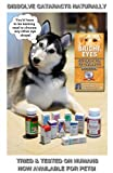 Carnosine Eye Drops For Dogs With Cataracts - Ethos