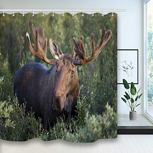 NYMB Antlers Decor Moose Bath Curtains, Reindeer Animals in Wild Forest Wildlife Safari Theme Xmas Shower Curtain for Bathroom, Fabric Bath Curtain Decorations 12PCS Hooks Included, 69X70 inches