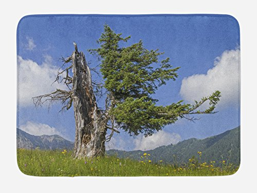 (Lunarable Nature Bath Mat, Old Spruce Tree Coming Back to Life from Death in Summer Meadow Country Image, Plush Bathroom Decor Mat with Non Slip Backing, 29.5 W X 17.5 L Inches, Blue Olive Green)