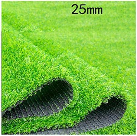 XEWNEG 人工芝人工芝カーペット25 Mm杭高、暗号化厚いプラスチック日焼け止め断熱材グリーンホームデコレーションカーペットマット (Size : 2x1M)
