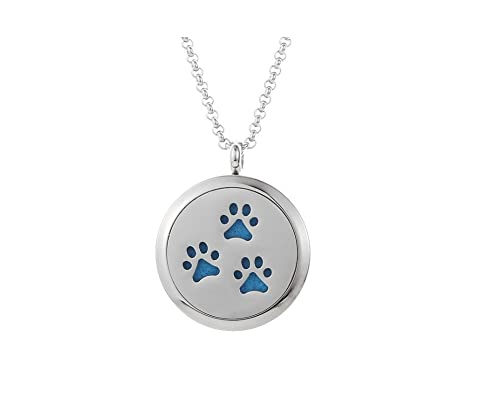 Amazon essential oil diffuser necklace aromatherapy pendant essential oil diffuser necklace aromatherapy pendant velvet jewelry bag and extra pads puppy aloadofball Gallery