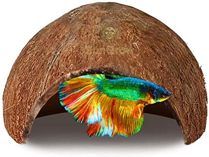Amazon Com Sungrow Betta Fish Cave 5x3 Inches Habitat Made From Coconut Shell Soft Textured Smooth Edged Spacious Hideout Shelter For Your Pet To Rest And Breeding Encourages Physical Activity 1 Piece