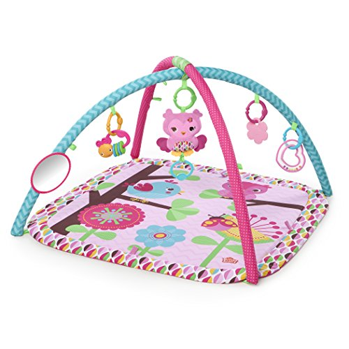 Read About Bright Starts Charming Chirps Activity Gym, Pretty In Pink