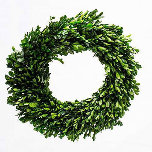 Richland Preserved Boxwood Wreath 17