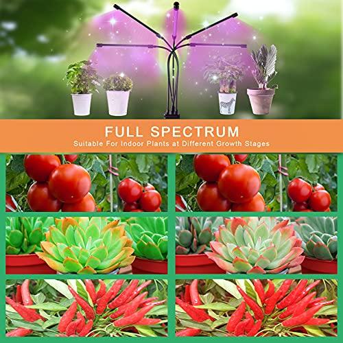 Aogled Pflanzenlampe LED 50W,5 Kopf Pflanzenlicht Vollspektrum,150 LED Grow Light mit Clip,Timing 3/9/12H,3 Modi,10 Lichtstärken Dimmbar Pflanzenleuchte für Sukkulenten,Tomaten,kleine Zimmerpflanzen
