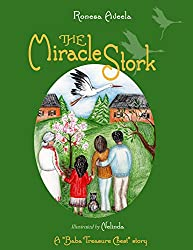 The Miracle Stork (A Baba Treasure Chest story Book 2)