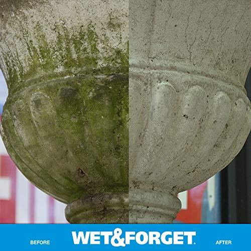 Buy wet and forget best price
