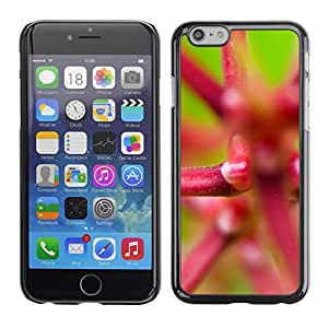 Cubierta de la caja de protección la piel dura para el Apple iPhone 6 (4.7) - Death Grim Reaper Skull Evil