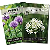 Sow Right Seeds - Chive Seed Collection for Planting - Grow Both Common Chives and Garlic Chives for Your Kitchen - Non-GMO Heirloom Seeds with Instructions to Plant, Indoor or Outdoor; Great Garden