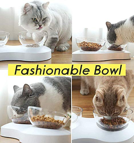 SKJIND Tilted Cat Double Bowls With Raised Stand,Transparent Non-spill Feeder Cat Feeding Bowl,Pet Food Water Bowl Perfect for Cats and Small Dogs