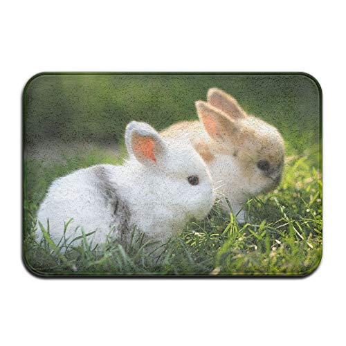 "YangPa Lovely Rabbit Outdoor Rubber Mat Front Door Mats Porch Garage Large Flow Slip Entry Carpet Standard Rug Home 23.62"" 15.74"""