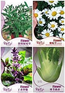 Delicious Garden 4 Kinds Rare Vegetable Seeds Indoor Children's Favorite Food Plant For Home Beauty Herbs Flower 4