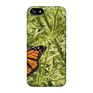 Hard Plastic Iphone 6 plus(5.5) Case Back Cover,hot Butterfly Case At Perfect Diy