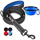 tobeDRI Heavy Duty Dog Leash - Comfortable Padded Handle, 6 ft Long - Dog Training Walking Leashes for Medium Large Dogs with A Free Collapsible Pet Bowl (Black/Blue)