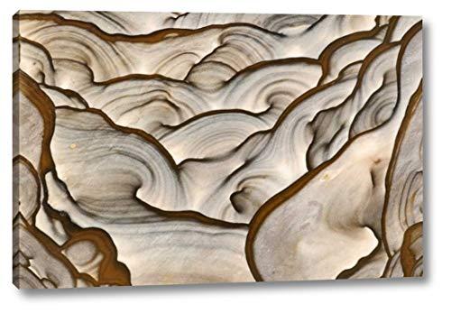 (Oregon, Biggs Close-up of Picture Jasper Stone by Dennis Kirkland - 13