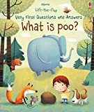 What is Poo? (Very First Lift-the-Flap Questions & Answers)