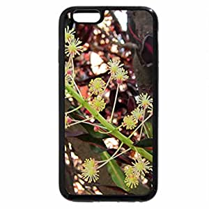 iPhone 6S Plus Case, iPhone 6 Plus Case, Wild flowers in the mountain