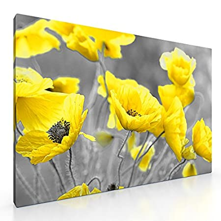 Large yellow poppy flowers in field canvas picture floral print 20 large yellow poppy flowers in field canvas picture floral print 20quotx 30quot mightylinksfo