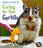 Giggle's Guide to Caring for Your Gerbils, Isabel Thomas, 1484602609