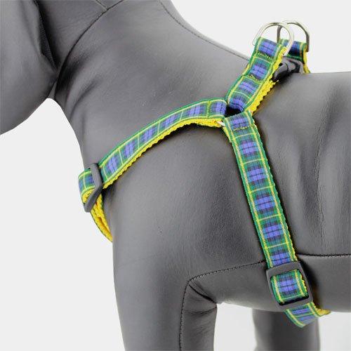 Plaid Dog Harness, Gordon Tartan