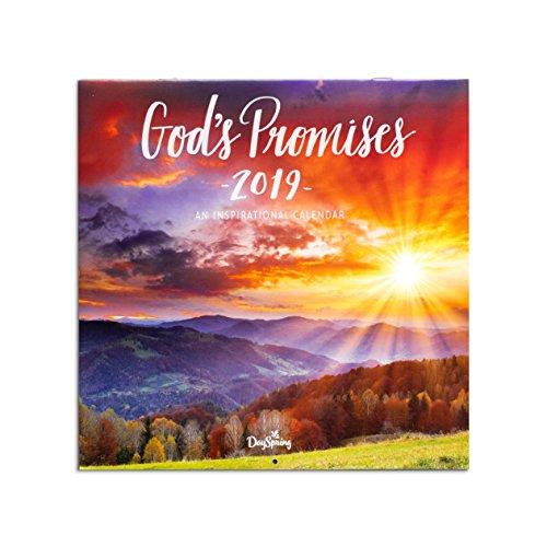 DaySpring God's Promises - 2019 Wall Calendar
