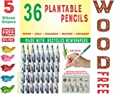 WOOD FREE PLANTABLE PENCIL HB#2 EXTRA DARK 36 Pencils + 5 Silicon Gripers FREE l 100% Recycled Newspapers l 100% Eco Friendly l 5 Assorted Seeds- TOMATO   FENUGREEK   CORIANDER   CHILI   MUSTRAD