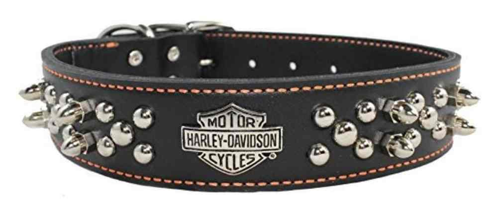 Harley-Davidson 1.5 in. Adjustable Double Row Spiked Premium Dog Collar - 24 in.