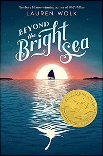 Image result for beyond the bright sea