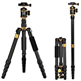 QZSD Q-888C Portable Travel Carbon Fiber Camera Camcorder Tripod Monopod With Ball Head and Carrying Pocket