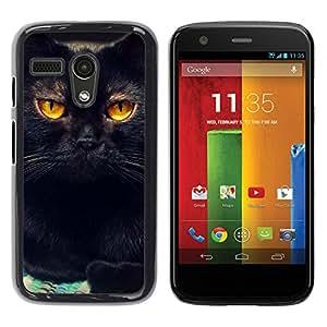 Vortex Accessory Hard Protective Case Skin Cover For Motorola Moto G ( 1St Gen Only ) - Black Cat Feline Orange Bombay Chartreux