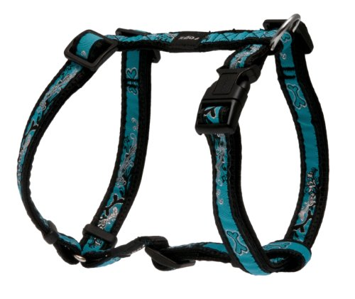 Rogz Fancy Dress Medium 5/8-Inch Scooter Adjustable Dog H-Harness, Turquoise Chrome Design