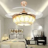 RS Lighting European Luxury Drop Ceiling Fan 42 inch with Chandelier for Restaurant Living Bedroom Remote Control Fan Lights