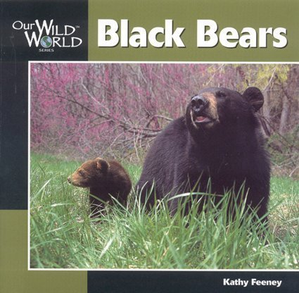 Download Black Bear (Our Wild World) pdf epub
